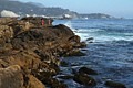 Point Lobos State Reserve - June 14, 2014