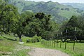 Sunol Regional Park - April 13, 2014