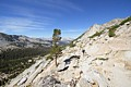 Yosemite National Park - July 11-16, 2014